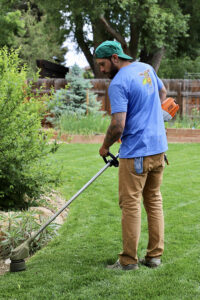 electric lawn care services